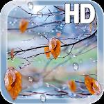 Autumn Raindrops Live HD v1.1