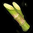 サトウキビ