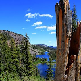 Ashes to Ashes by Liesl Ross Photos - Landscapes Mountains & Hills ( tamarak lodge, mountain, california, lake, mammoth )