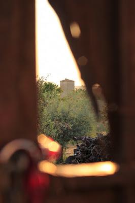 Attraverso un cancello di Daria77