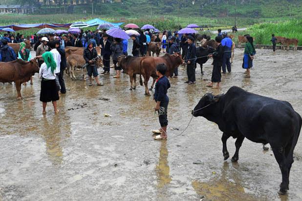 Meo Vac ethnic market