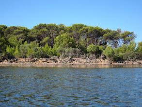 Photo: Isola di Santa Maria