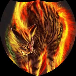 Enraged cat live wallpaper apk