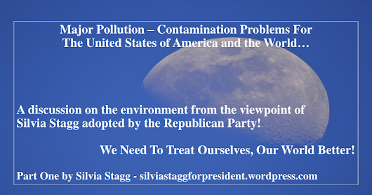 Major Pollution_Contamination Problems For USA_World_By Silvia Stagg October 11.2018.pdf