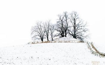 Photo: Kullerberg mit Grabstelle der alten Mecklenburger an der Tollense bei Neubrandenburg