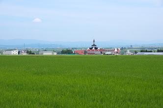 Photo: 北竜町の彩どり・2014年7月の3
