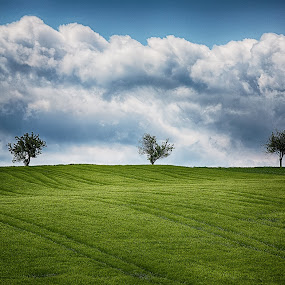 three trees by Christoph Reiter - Landscapes Cloud Formations ( clouds, trees )