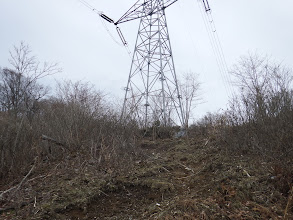 苔の斜面を登る