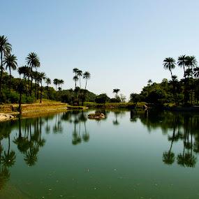 Scenary of Achalgadh by Dola Das - Landscapes Travel ( nature, waterscape, travel, landscape, reflexaction,  )