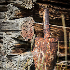 Forgotten tools by Dan Bartlett - Buildings & Architecture Decaying & Abandoned ( shovel cabin barn wood ranch rusty old antique,  )