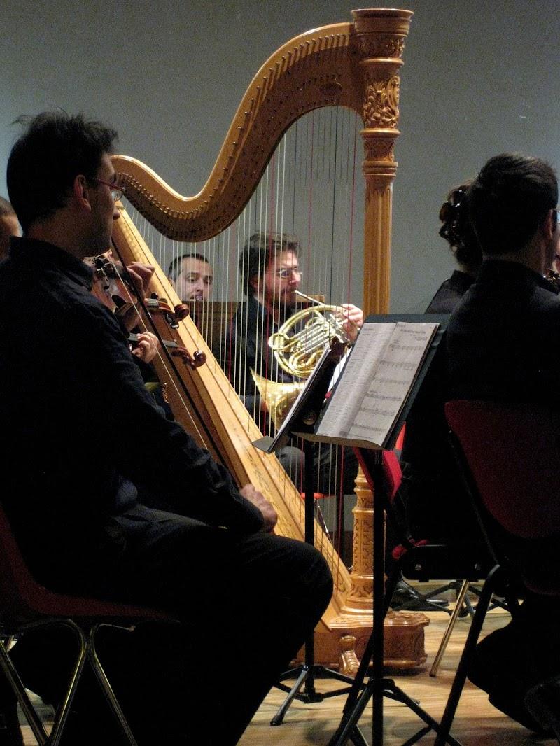Il concerto di Elisabetta Castellano