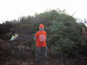 Photo: Back again in November for more cutting -- it's deer season, hence the day glow orange.