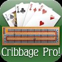 Cribbage Pro Online! icon