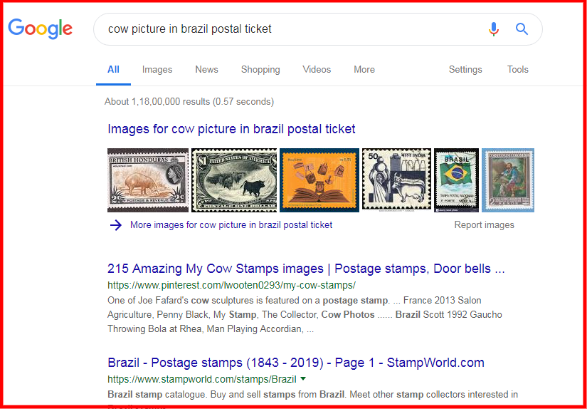 gooogle search 1 .png