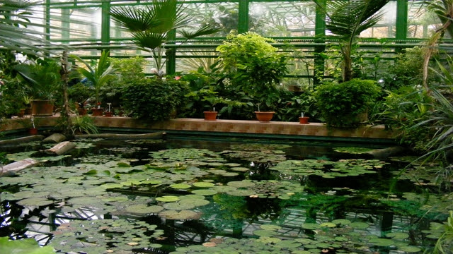 Botanical Garden Bucharest, Romania