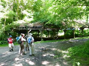 Photo: A la source St Martin dans le bois du Thuit.