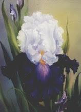 Photo: KP22 Iris (for 18 x 24 canvas) $6.99