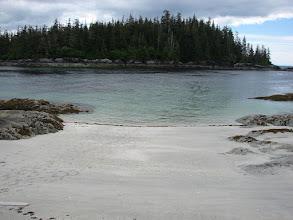Photo: Fox Island from Cape Fox