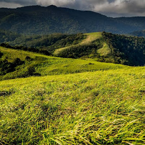 Elivai Malai...Western Ghats 3 by Christy Abraham - Landscapes Mountains & Hills