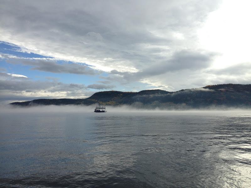 Nebbia canadese di michimotta