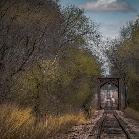Lonely Road  by Bob White - Transportation Railway Tracks ( sky, railroad, fall, trees, bridge, tracks, trains )