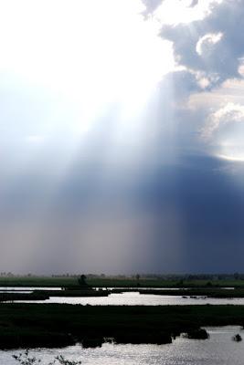 Il risplendere di un raggio di sole.. di Alicina°