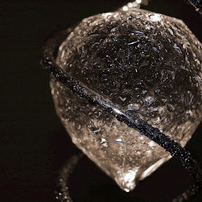 Diamond by Michael Miller - Novices Only Objects & Still Life ( abstract, jewellry, still life, diamond, art, glass, shine, sparkle, object, wet )