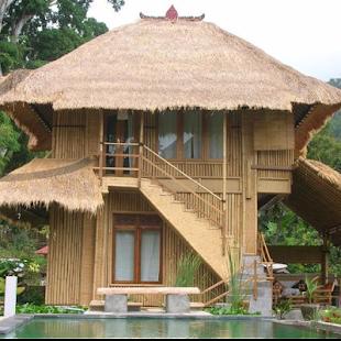 Bamboo House Fancy - náhled