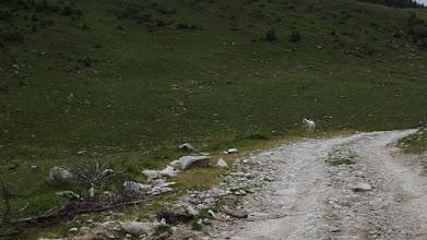 Photo: A hágóút