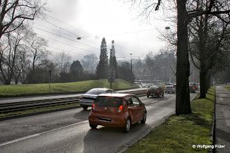 Photo: Dieses Grün entlang der Neckartalstraße gegenüber der Wilhelma ist gefährdet