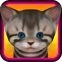 Cute Kitten  icon