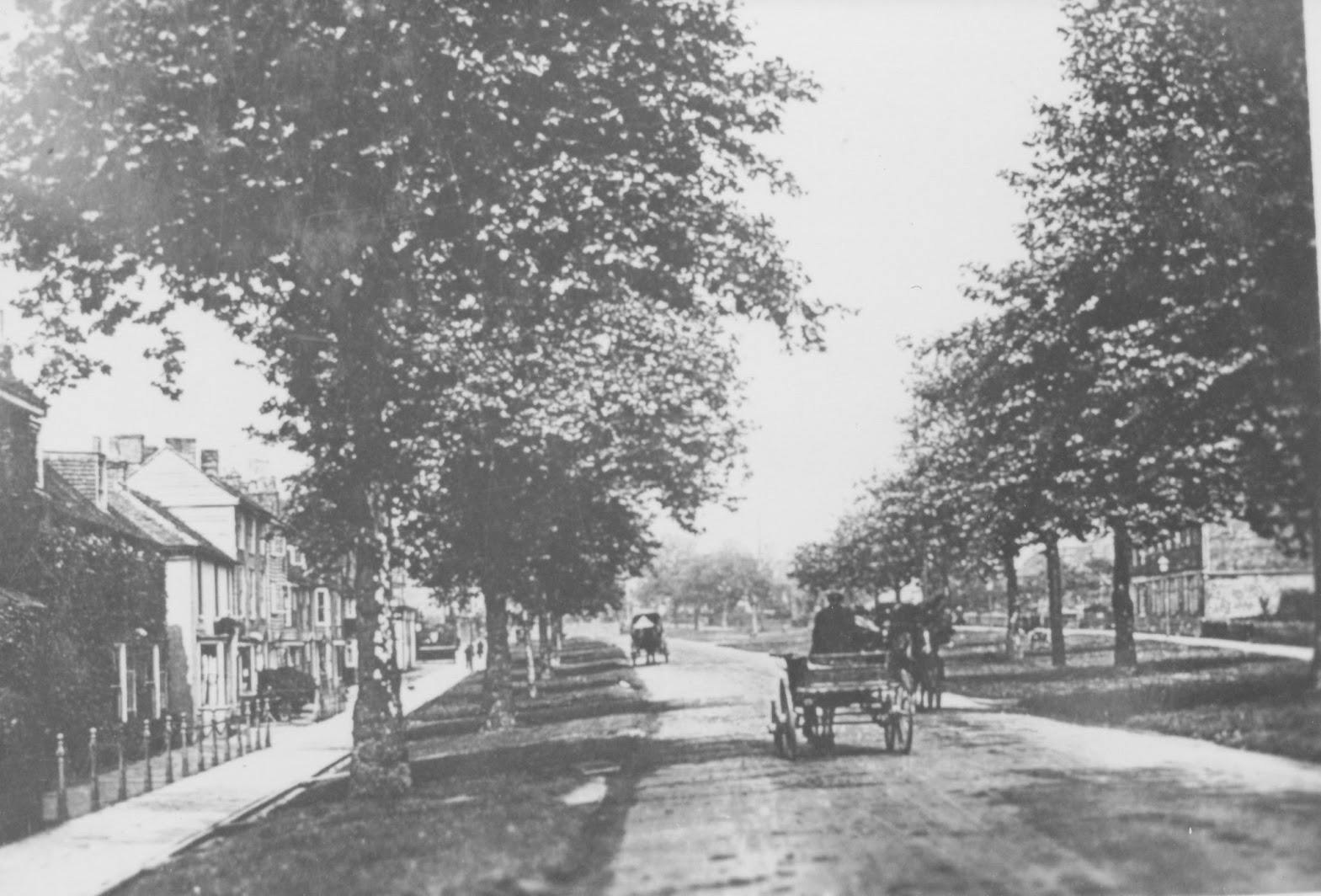 Tenterden Archive photos Lower High Street Tenterden