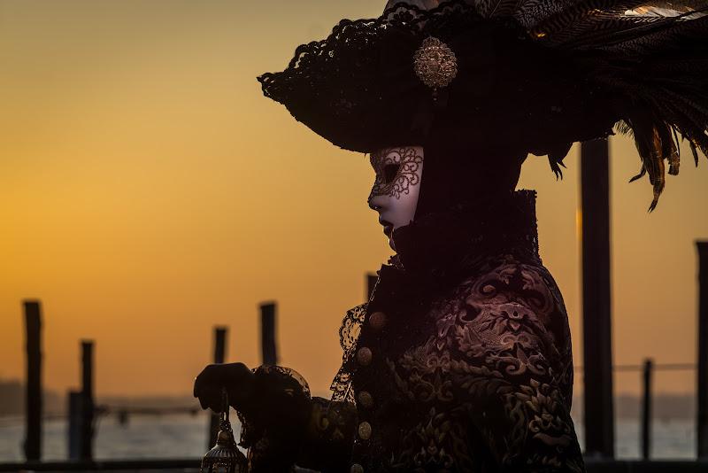 Profilo Veneziano di aliscaforotto