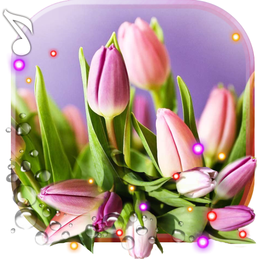 Spring Tulips live wallpaper file APK for Gaming PC/PS3/PS4 Smart TV