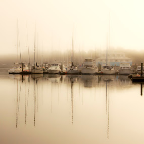 Foggy Mirror by Keith Wood - Landscapes Waterscapes ( beaufort, water, kewphoto, scape, keith wood,  )