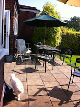 Photo: patio full of garden furniture