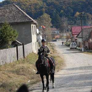 Trail Riding on Horseback in Romania