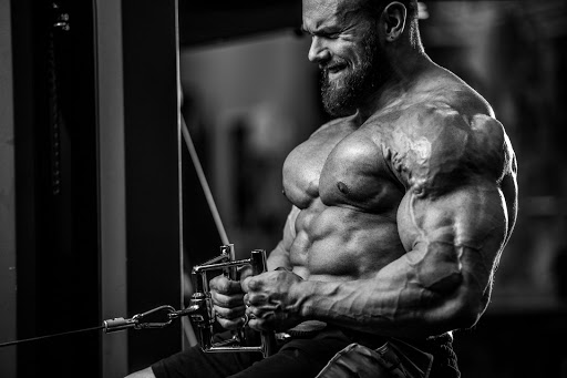 How Herbs Are Related to Gains