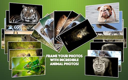 Wild Animal Photo Frames 4.2.1 screenshots 9