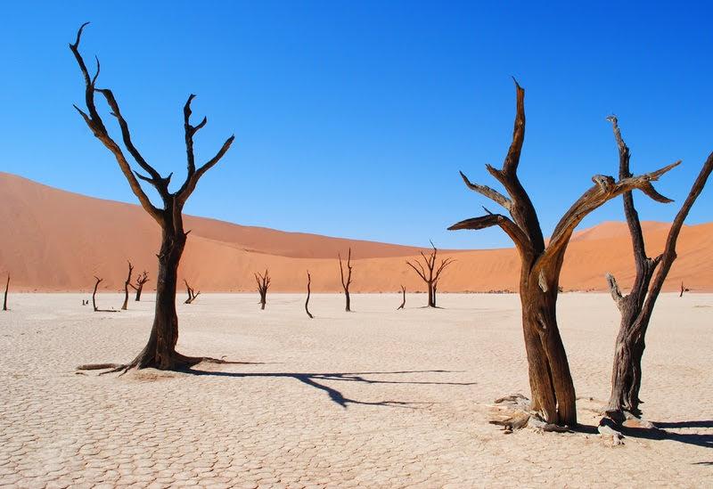 Desierto del Namib, el más antiguo del mundo