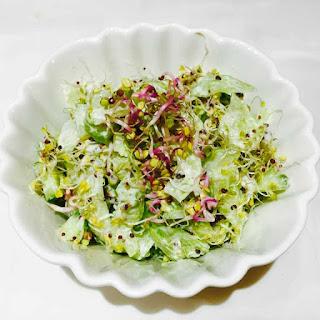 Cucumber, Broccoli And Radish Sprouts Salad.