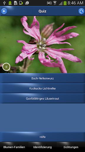Alpenblumen bestimmen online dating