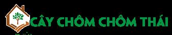 Cây Chôm Chôm Thái