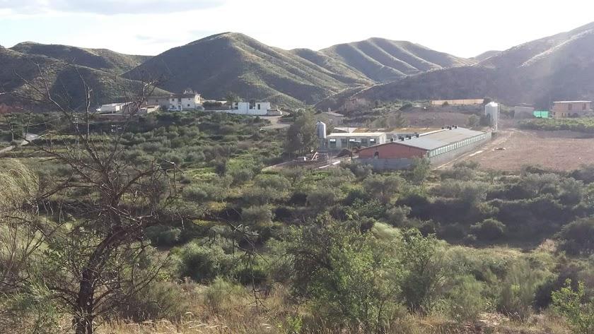 Zona afectada entre los municipios de Cantoria y Albox.