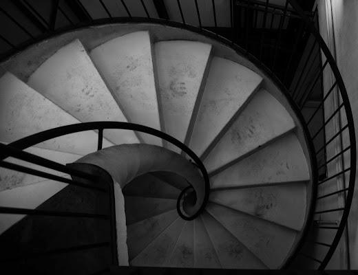 Scala o conchiglia ? di Alessandro Marani