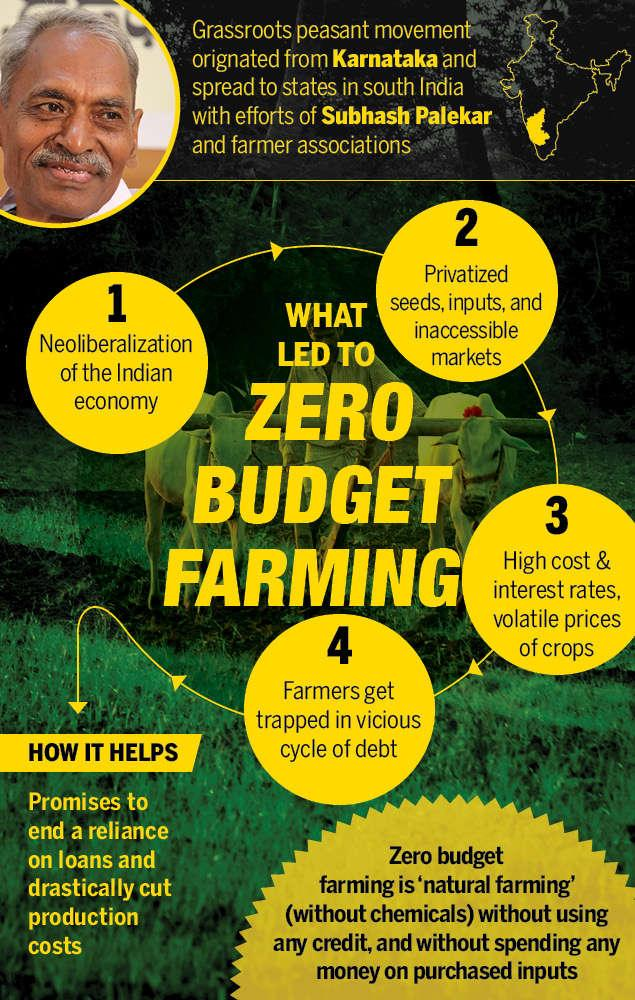 Image result for  Zero Budget Natural Farming