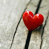 It's Valentines Day! Now what?