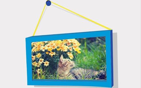 Zvířata Puzzle: Kočky - náhled