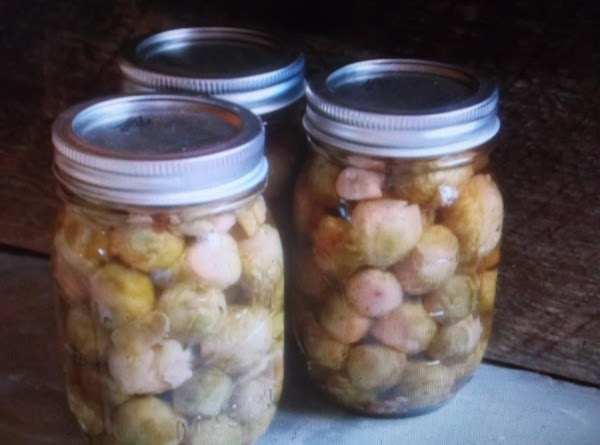 Pickled Brussels Sprouts Recipe