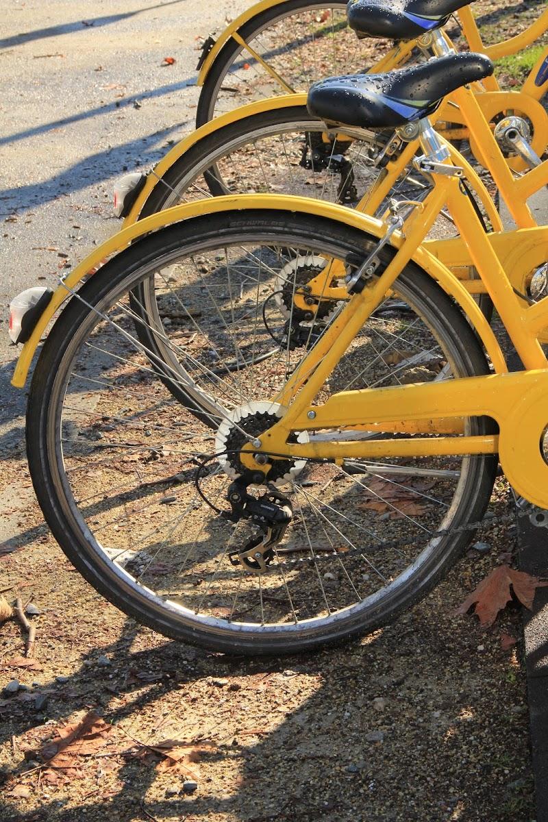 due ruote di smpaint